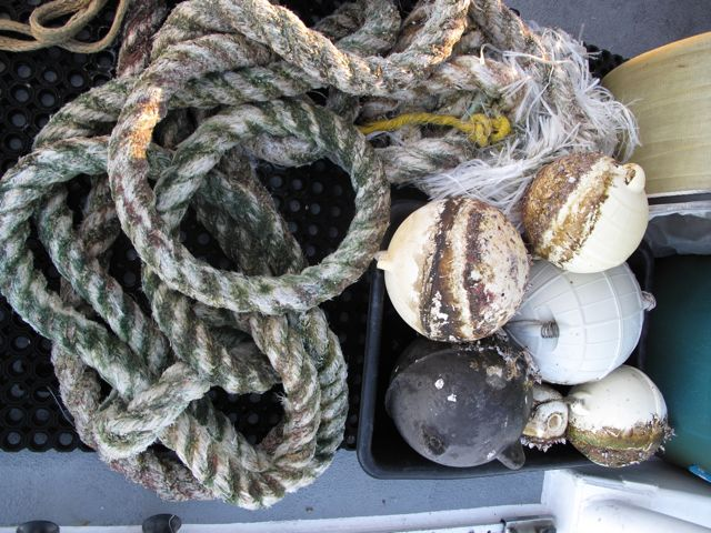 buoys and rope