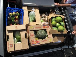 A truck load of food from the Kapi'olani Community College Farmer's Market to feed six hungry crew members while at sea for three weeks